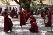 Dibattito dei monaci, monastero di Sera - Lhasa - Tibet