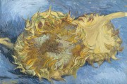Van Gogh, Two Cut Sunflowers, 1887, Metropolitan Museum of Art, New York