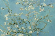 Van Gogh, Almond Branches in Bloom, 1890, Van Gogh Museum, Amsterdam